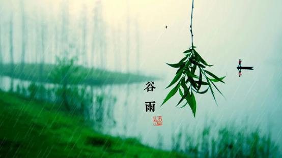 今日谷雨:春天的回眸一笑!一套全景门,陪你看四季变换
