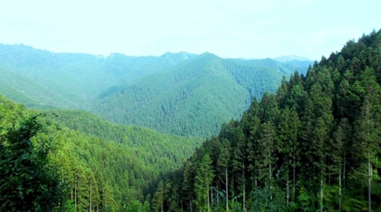 世界地球日:保护环境人人可为
